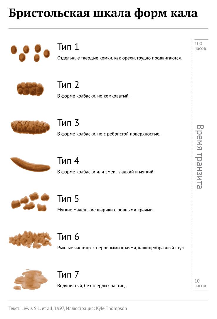 Бристольская шкала форм кала